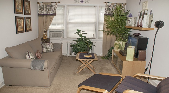 Jetu Apartments: Washington DC: Living Room