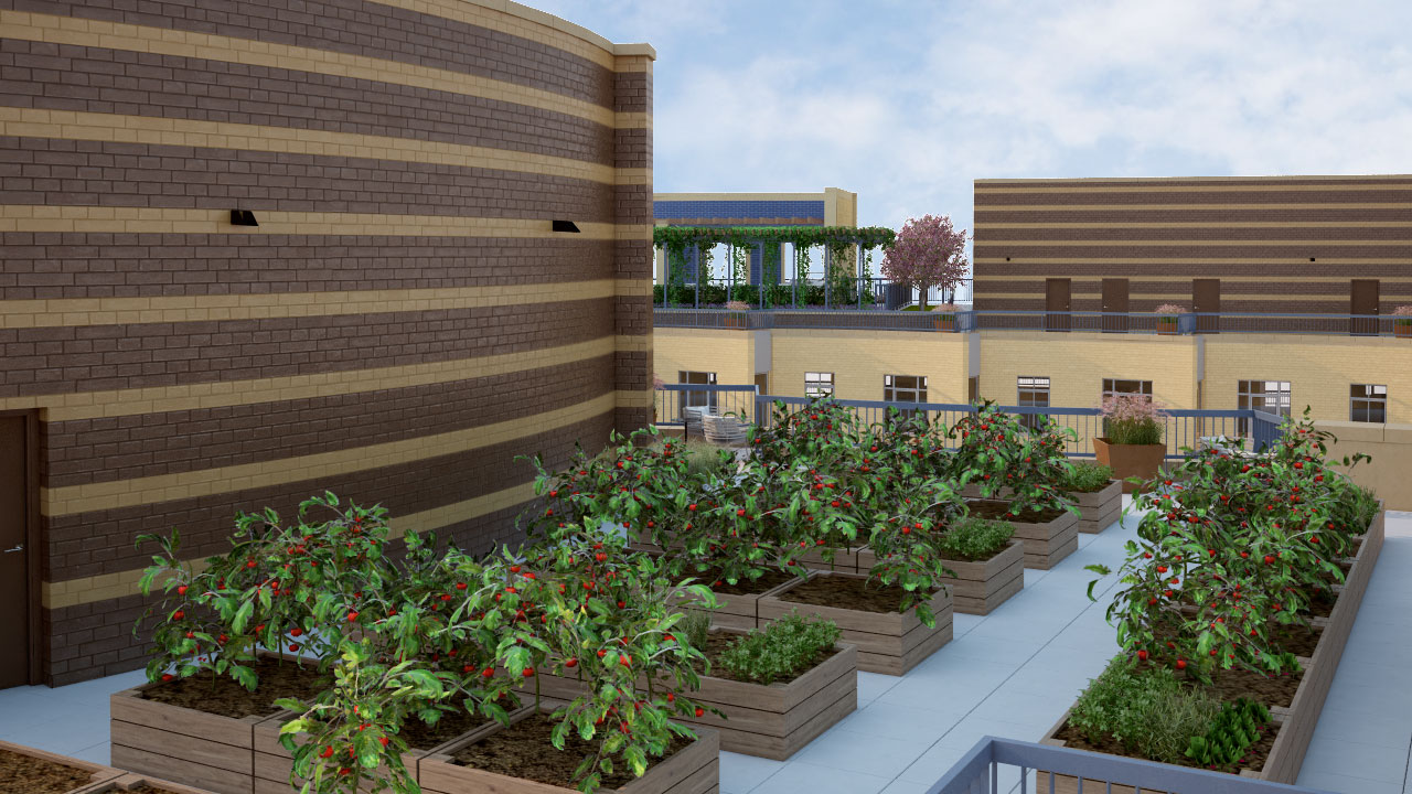 Park Chelsea Rooftop Resident Community Garden | Luxury Pet-Friendly Apartments in Washington DC