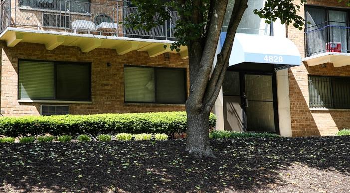 Washington DC Apartment Rentals