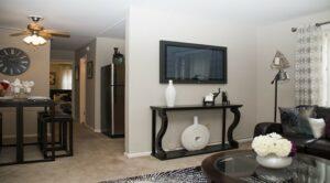 Garden Village Apartments: DC Apartments: Southeast: Living room: TV