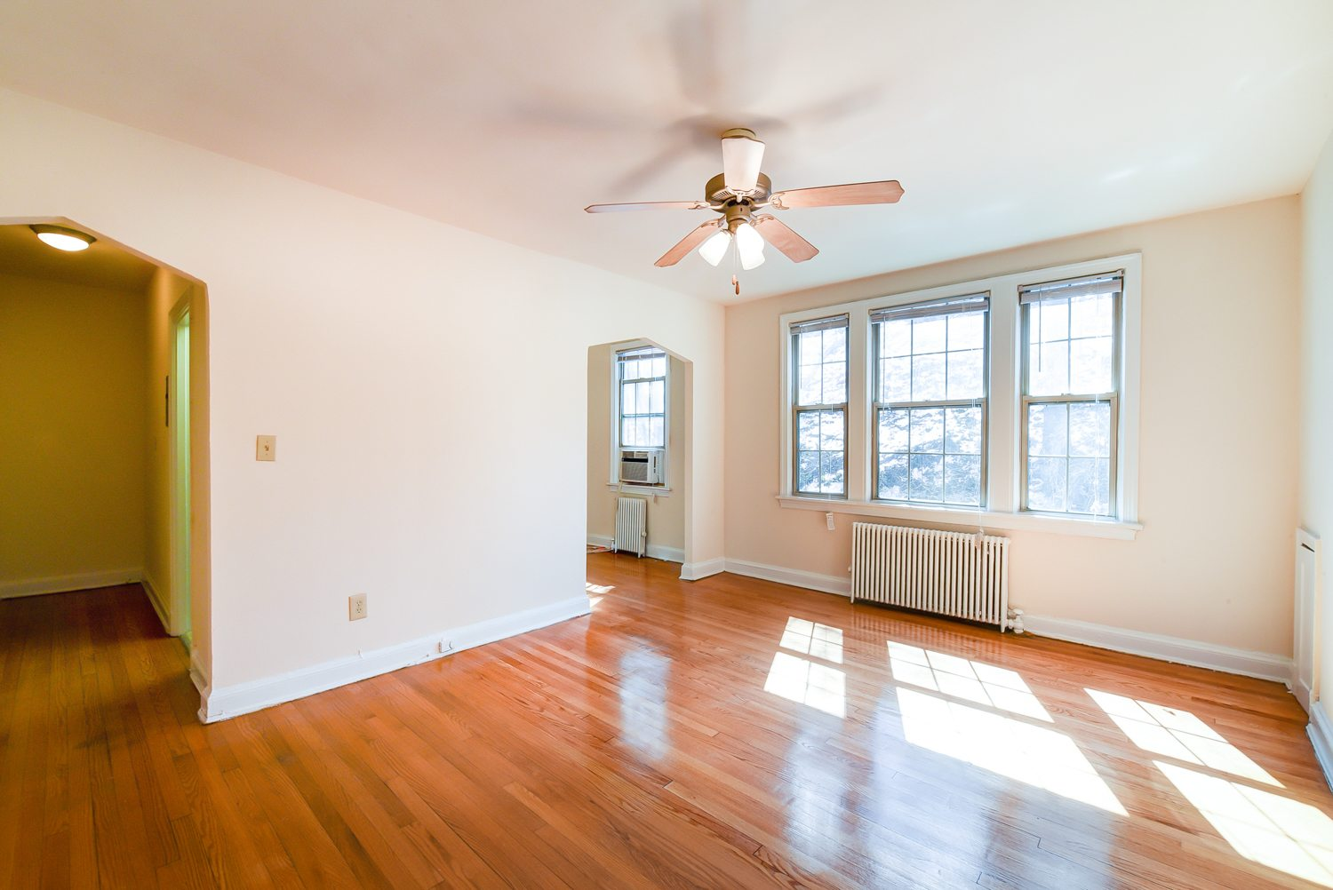 Dog Friendly Apartments For Rent In Washington Dc