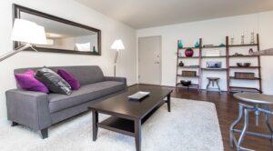 fairway-park-apartments-northeast-dc-rentals-livingroom