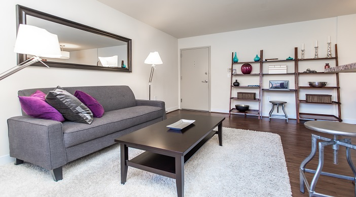 fairway-park-apartments-northeast-dc-rentals-livingroom