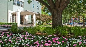 clarence-house-exterior-landscaping-dc-rentals