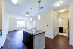 Archer-Park-Apartments-Washington-DC-SE-Island-Livingroom
