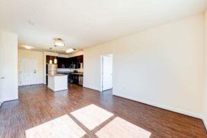Archer-Park-Apartments-Washington-DC-SE-livingroom-Kitchen
