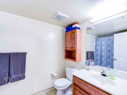 ParkVistaApartments-Southeast-DC-Affordable-Batheoom