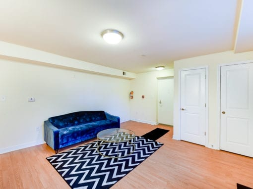 ParkVistaApartments-Southeast-DC-Affordable-Livingroom (2)