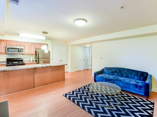 ParkVistaApartments-Southeast-DC-Affordable-Livingroom-Kitchen-Island - Copy